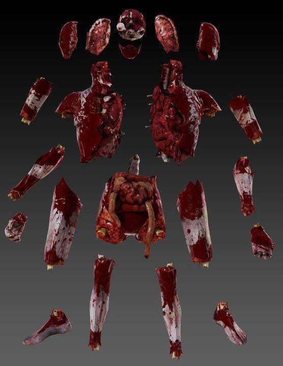 Killing floor 2 anatomy